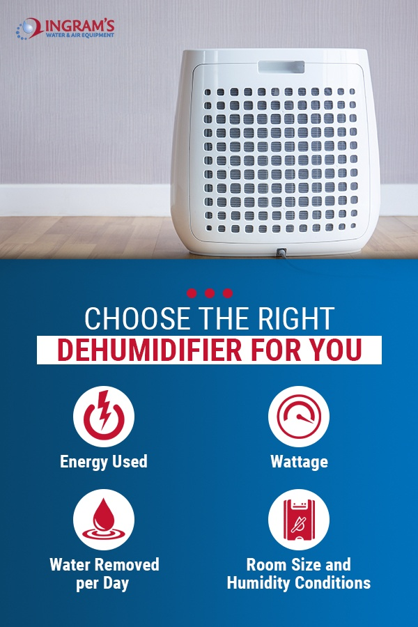 Choosing the Right Dehumidifier